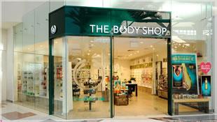 the_body